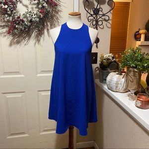 WAYF Brand Royal Blue Sheath Dress Sleeveless